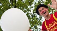 cirkus-minimus-bifald